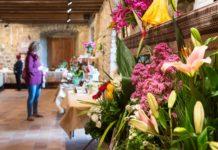 Flors Castell d'Aro