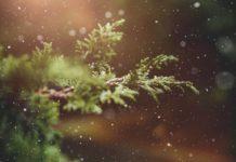 hivern meteo