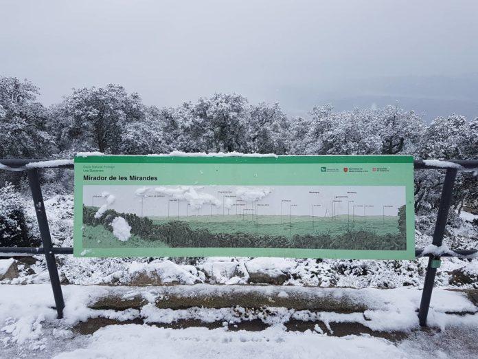Romanyà de la Selva / gavarres