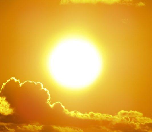 sol gavarres