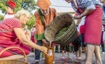 Festa de la Verema de la DO Empordà
